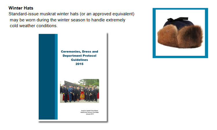"""The RCMP Ceremonies, Dress and Deportment Protocol Guidelines 2015 states, """"Standard issue muskrat winter hats (or an approved equivalent) may be worn during the winter season to handle extremely cold weather conditions."""""""
