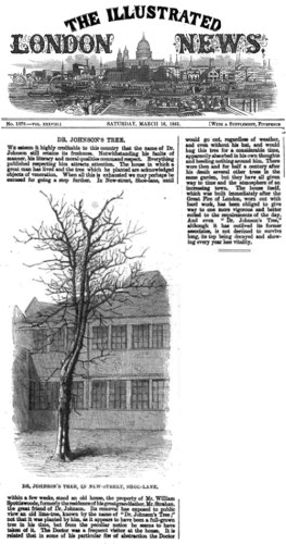 Dr. Johnson's Tree. The Illustrated London News Saturday, March 16, 1861