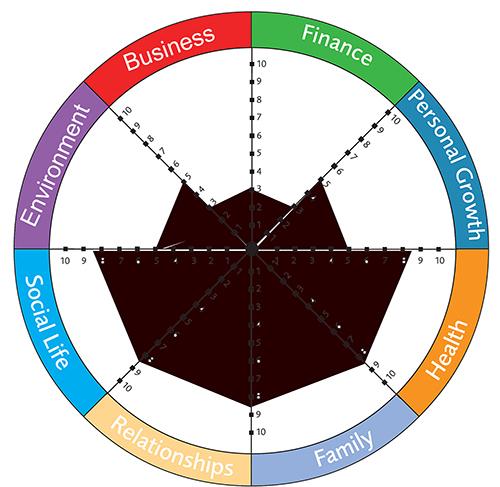 wheel of life, 25 day success challenge