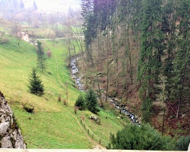 Green Slovenia