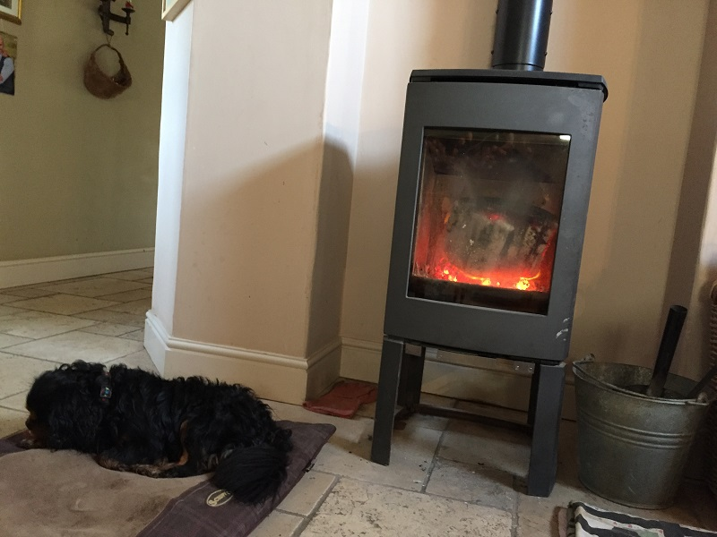 Sleeping dogs and burning fire on a house-sitting assignment