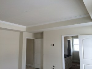 House Progress 11.29.2014 (11)