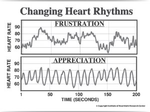 Changing Heart Rhythms
