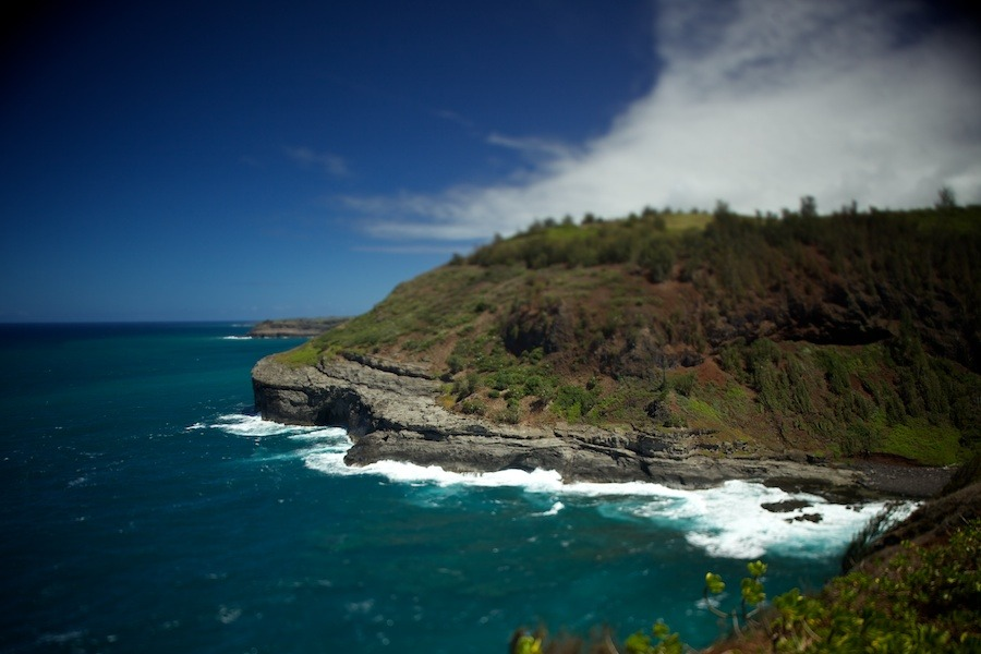 Kilauea Point Lighthouse Kaua I Gregg Greenwood