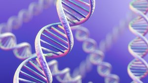 Utah DNA Test Defense