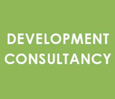 development consultancy
