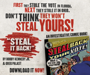 Dont let them steal your vote!