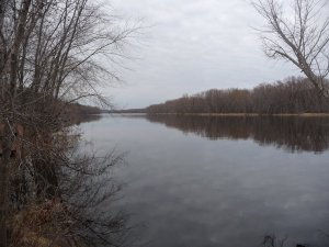 The flooded St. Croix in March looking upstream from William O' Brien State Park