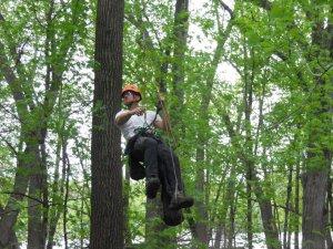 Climber Jim Spickler ascends to the eagle nest