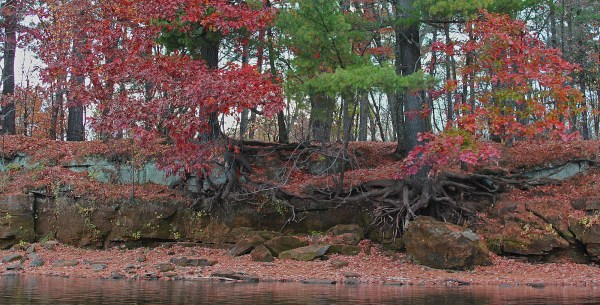 River banks and color