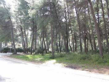 villa-berta-1