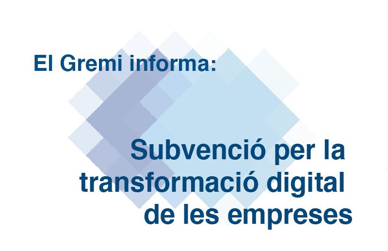 subvenció per la transformació digital de les empreses