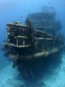 Best Scuba Diving In Grenada Amp The Grenadines PADI Diving
