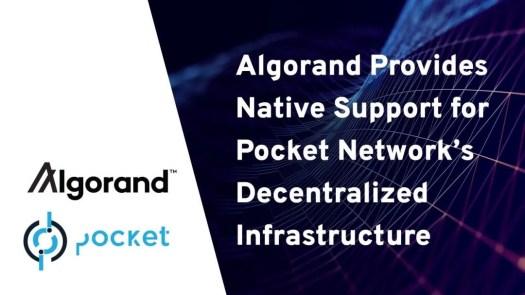 Algorand 將為 Pocket Network 下一代去中心化基礎設施提供原生支持