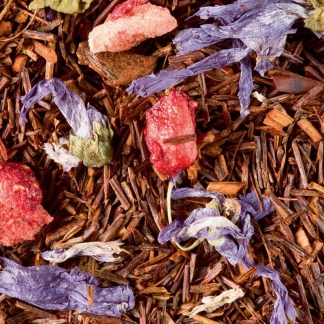 rooibos fruits rouges dammann frères