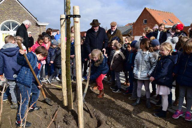 Kinderen Kouterschool Zwevegem planten Honingboom