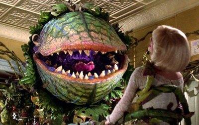 """Standbild aus dem Film """"Der kleine Horrorladen"""" (1986) und humorvoller Kommentar zum Konzept sich selbst bewusster Pflanzen. Copyright: The Geffen Film Company/Warner Bros."""