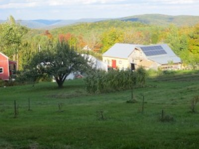 Bear Swamp Orchard, in Ashfield, Mass., offers organic sweet and hard cider, as well as other farm products, photo courtesy Bear Swamp Orchard.
