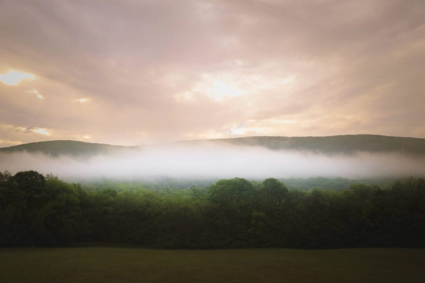 The morning mist rises in the distance over Bloom Meadows; submitted photo.
