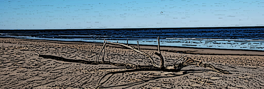 """""""Sandy Beach,"""" by Adavyd; Cropped, shopped, and resized; [CC BY-SA 3.0], from Wikimedia Commons"""