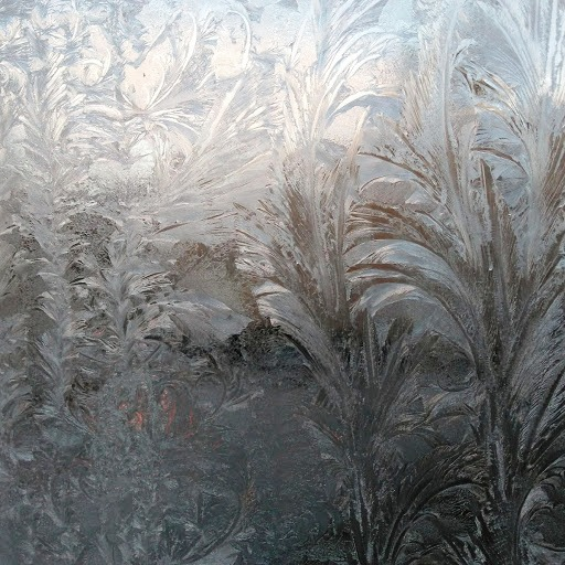 Ice garden on a very old (1847) north-facing window of Lawrence Hall, home of the Williams College Museum of Art.