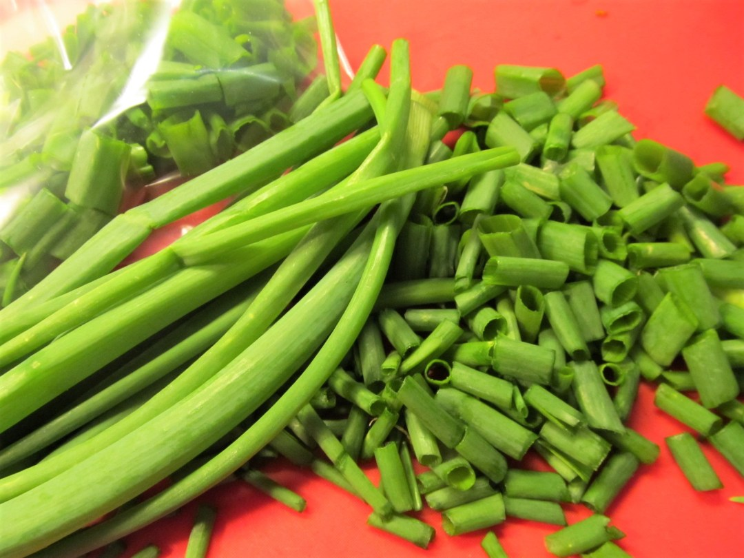 Photo of green onion stalks, some long, some diced; Bunching onions for the freezer; photo by Sheila Velazquez