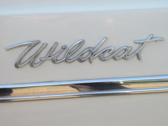 Wildcat emblem