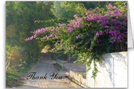 Thank you note for flowers after death new top artists 2018 top best funeral thank you cards love lives on infographic funeral thank you notes thank you letter for death in family images letter format formal sample thank expocarfo Gallery