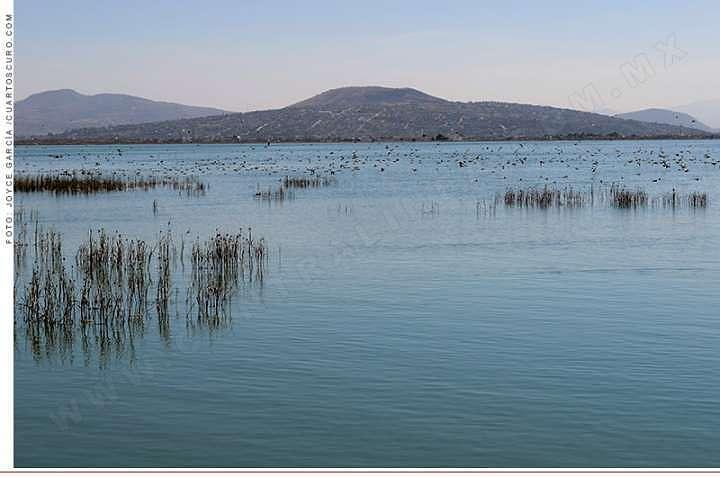 El lago vale mucho más que el aeropuerto