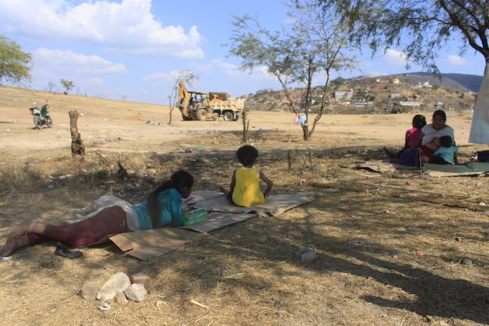 Olvidados por el Gobierno de Guerrero, indígenas Na Savi son desplazados en extrema pobreza (Guerrero)