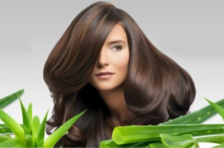 how-aloe-vera-helps-in-hair-growth