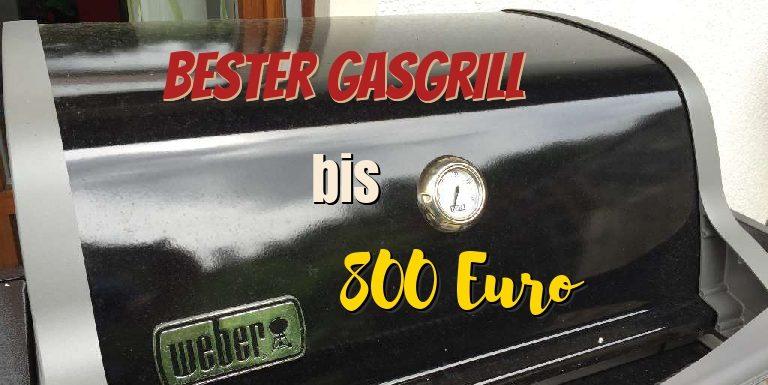 Guter Gasgrill Für Wenig Geld : Bester gasgrill bis euro grillfleisch