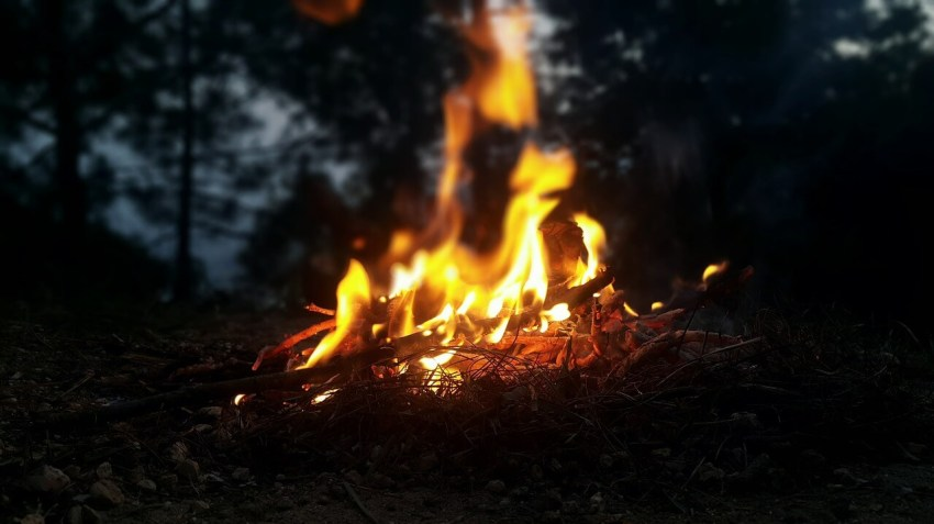 offenes feuer wald