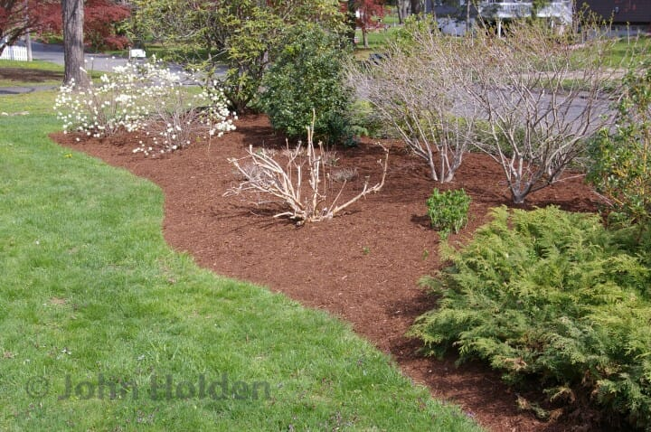 How To Re Mulch Your Garden Landscape Beds Like A Pro Grillo
