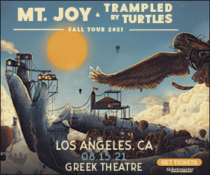mt joy and trampled by turtles