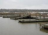 harbour-dmg-1