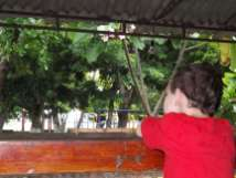 Kid Waiting for Rain to Stop
