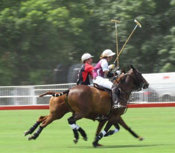 A Day At The Polo