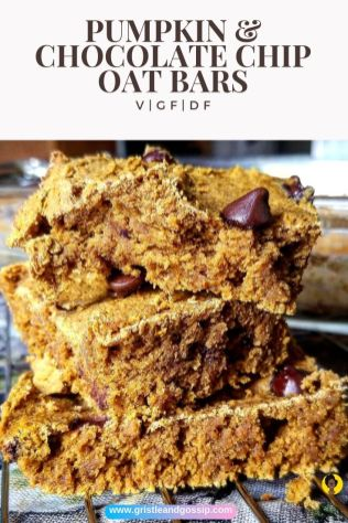 Pumpkin and Chocolate Oat Bars| Top Recipes | Year in Review