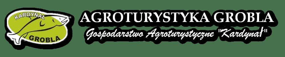 Agroturystyka Grobla