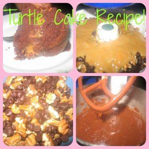 Turtle Cake Recipe!