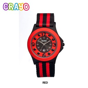 Crayo Canival Series Watch Only $19 Shipped {Reg $125}!
