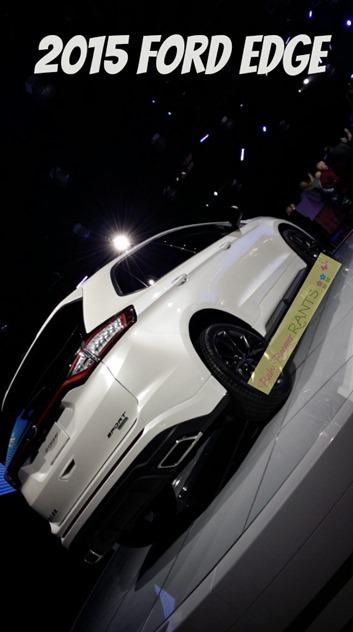 2015 Ford Edge W