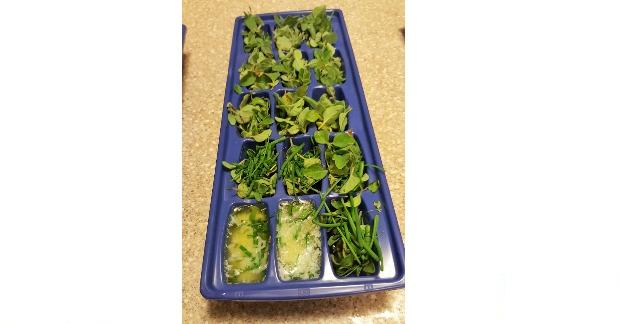 herbs-in-butter