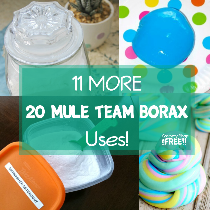 11 MORE 20 Mule Team Borax Uses!