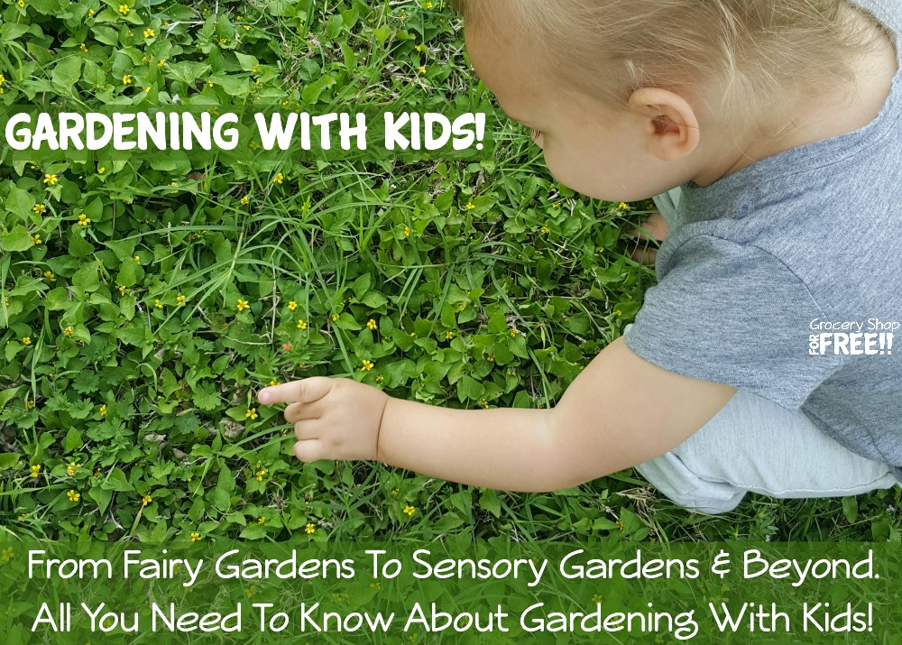 Are you gardening with toddlers, or gardening with children?  Learn how gardening for toddlers & gardening with preschoolers can be fun & educational!