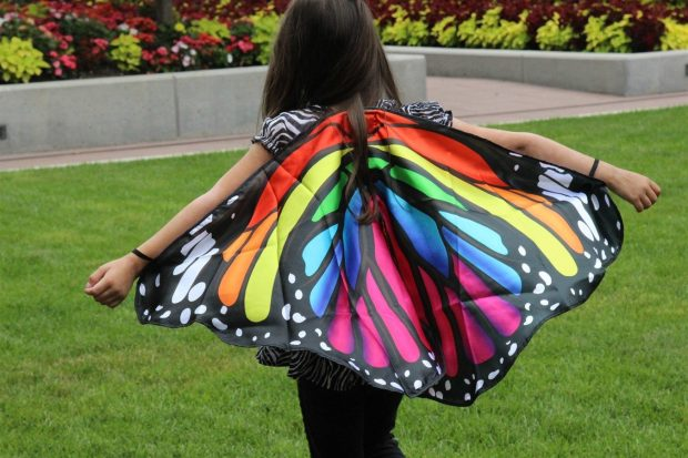 Satin Rainbow Monarch Butterfly Wings Only $11.99!