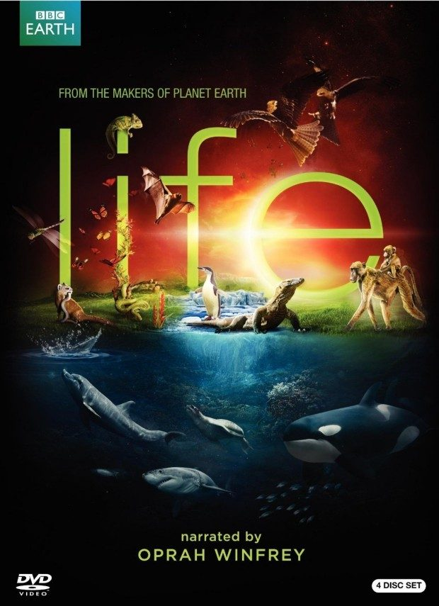 "BBC Series ""Life"" On DVD Just $7.99! (Reg. $70!)"
