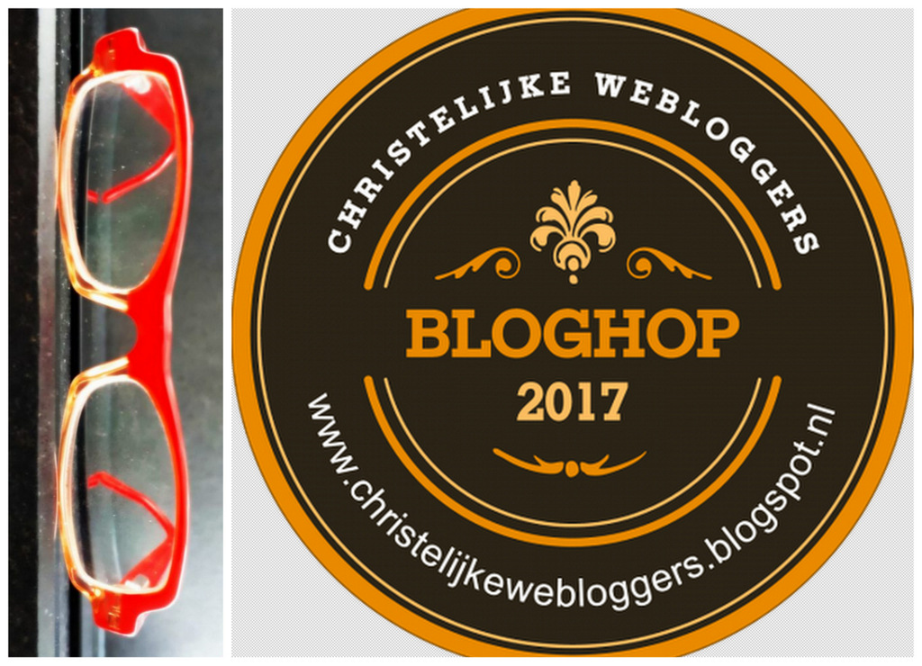 Bloghop rode bril