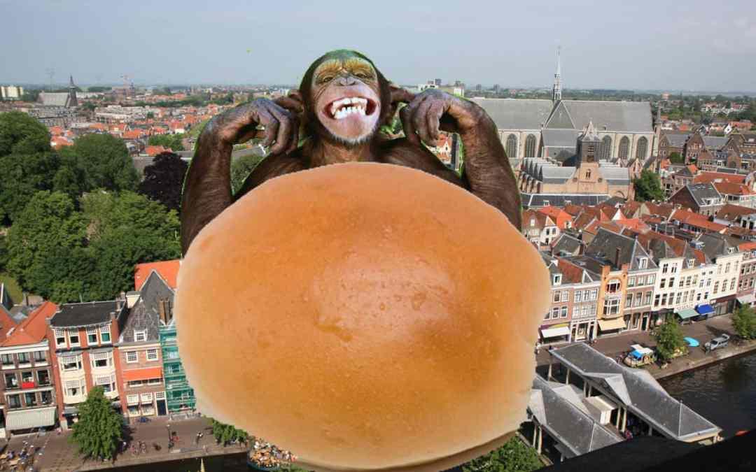 Broodje Aap Leiden – stadswandeling
